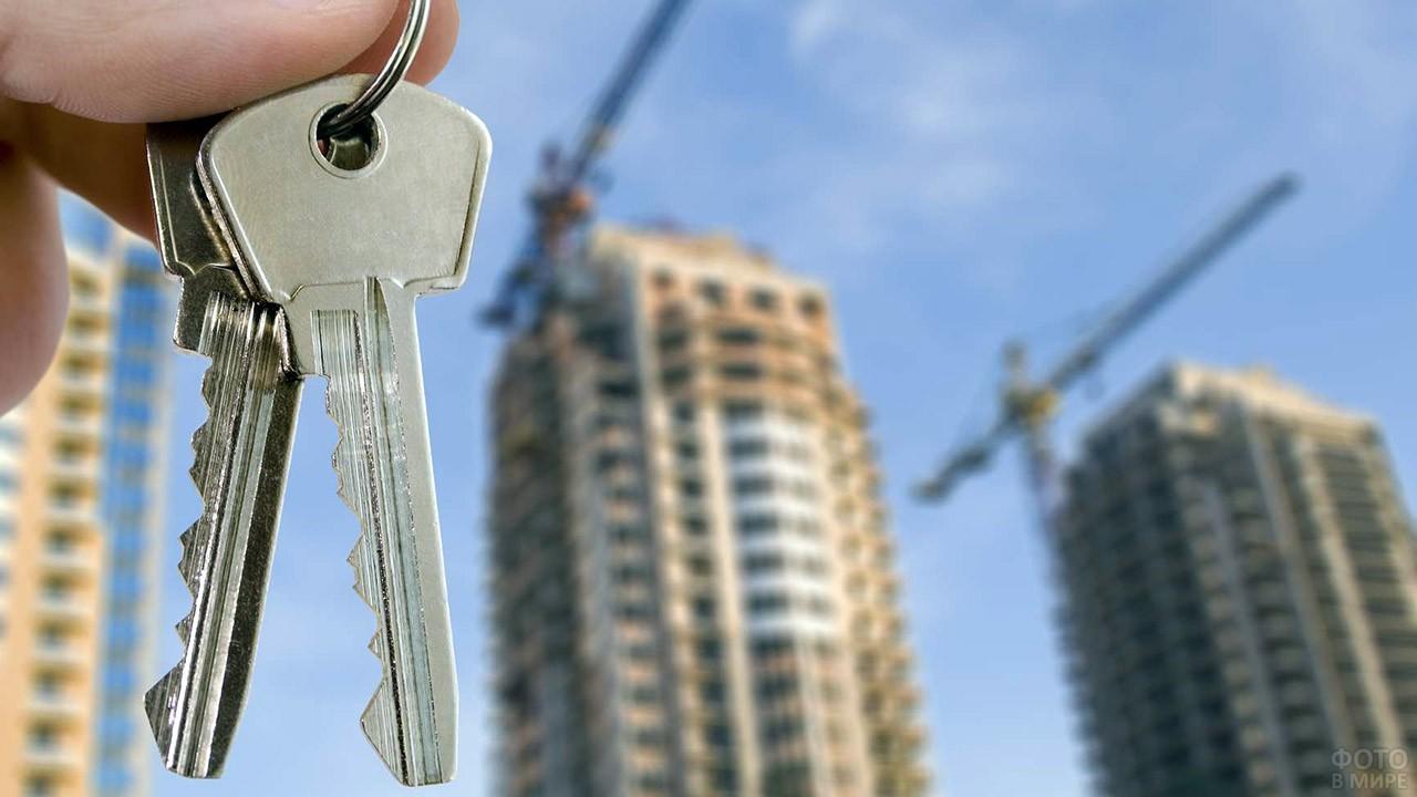 Ключи в руках на фоне строящихся многоэтажек