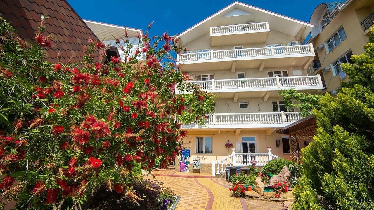 Красивый цветущий сад у отеля