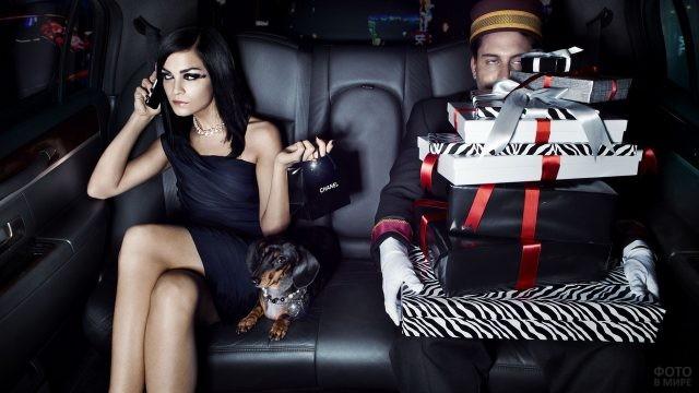 Девушка на заднем сиденье авто с покупками, таксой и носильщиком