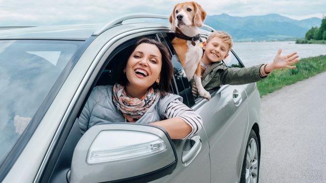 Семья выглядывает из серого автомобиля на дороге