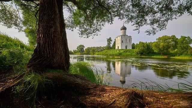 Живописный пейзаж с церковью Покрова на Нерли