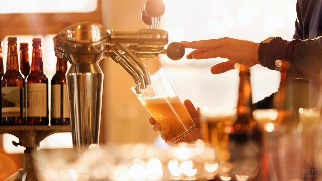 Пиво наливается в бокал из кега в пабе