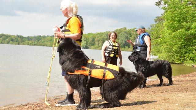 Спасатели на берегу водоёма