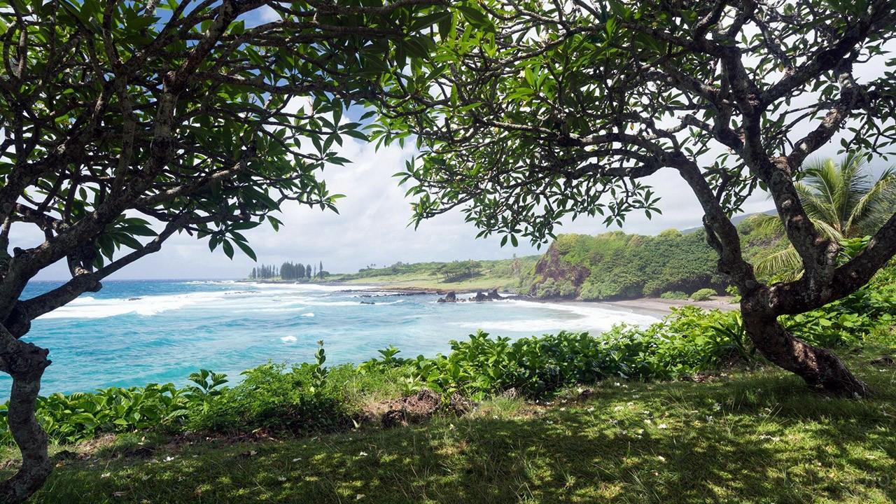 Тенистый берег острова Оаху в гавани Пёрл-Харбор