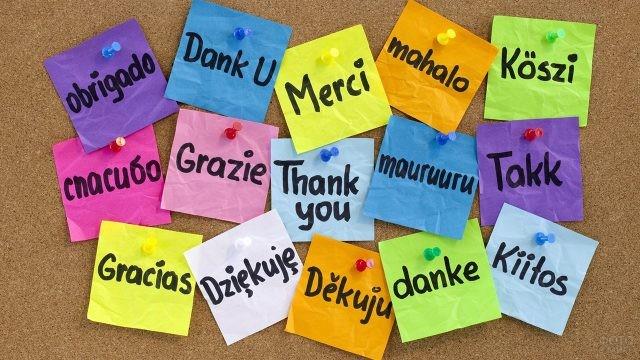 Разноцветные стики со словом Спасибо на разных языках