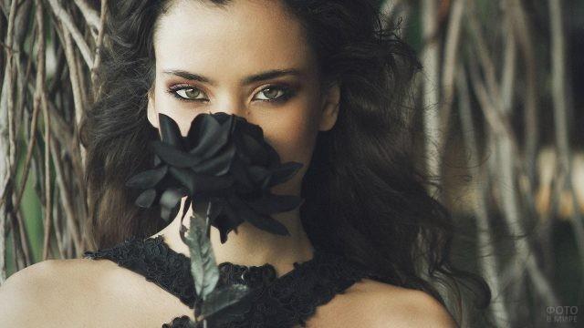 Мулатка с чёрной розой у плетёного забора