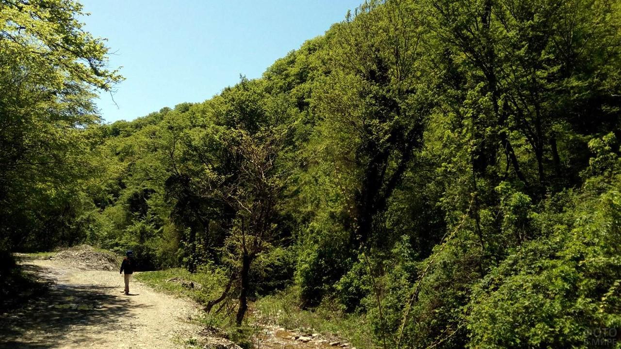Горная тропа к Тенгинским водопадам