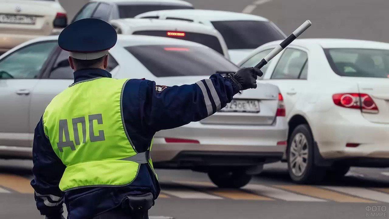 Сотрудник ДПС жезлом останавливает автомобиль
