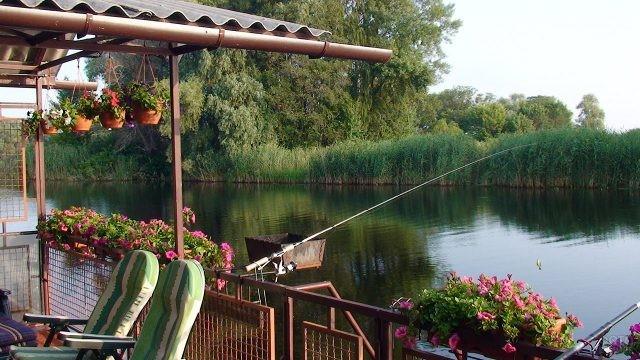 Фидерная рыбалка с цветущей веранды