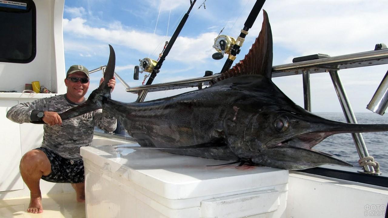 Экзотический улов на рыбалке в Тайланде