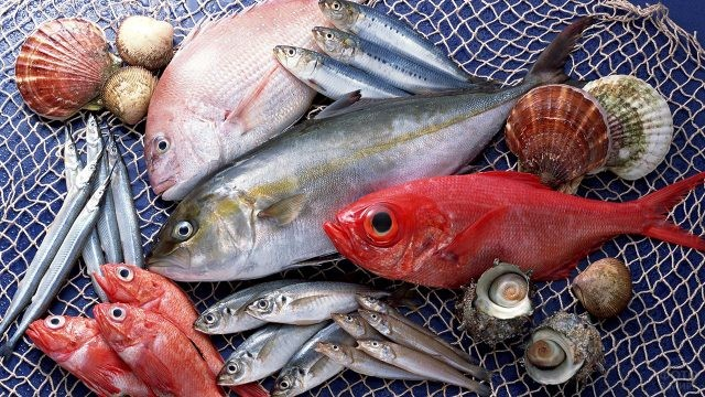 Лучший подарок к Дню рыбака - свежий улов