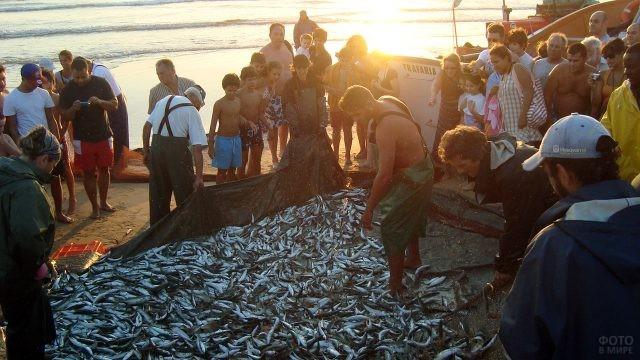 Рыбаки с уловом и зрители на берегу Атлантического океана