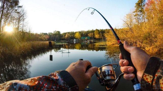 Спиннинг в руках человека, подводящего пойманную рыбу