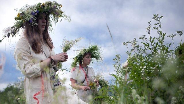 Две девушки в летнем поле собирают цветы на венки на Ивана Купалу