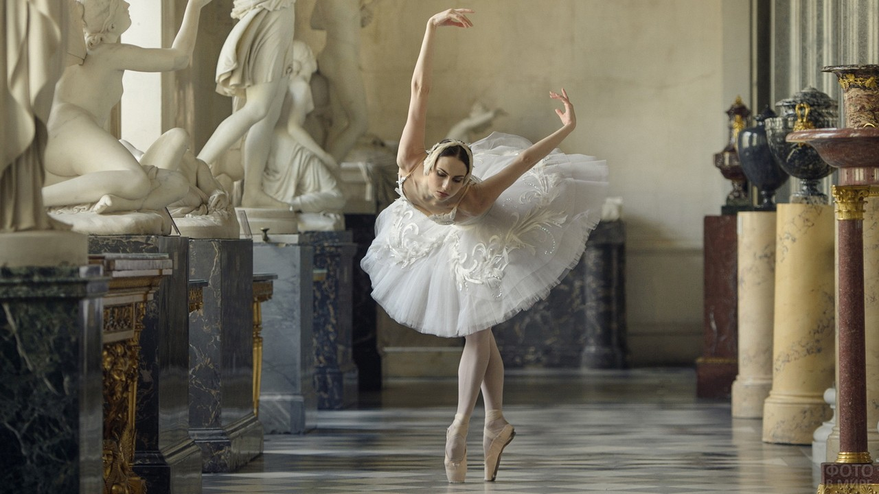 фотосессия в виде балерины индивидуальная