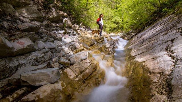 Экотуристка с собакой в Долине ста водопадов