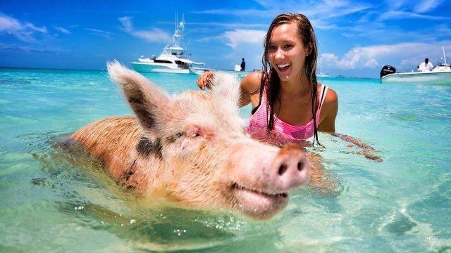 Свинка купается вместе с девушкой
