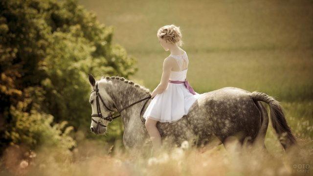 Наездница верхом на лошади на природе
