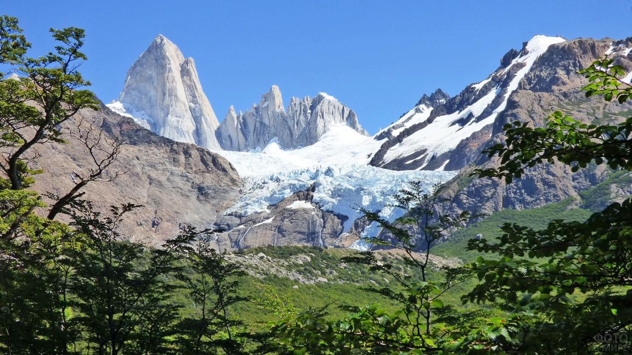 Зелёные джунгли вблизи снежных гор в Аргентине