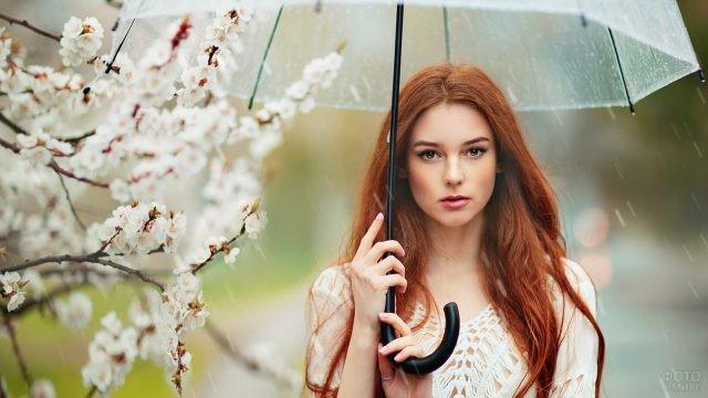 Красотка под прозрачным зонтом у сакуры