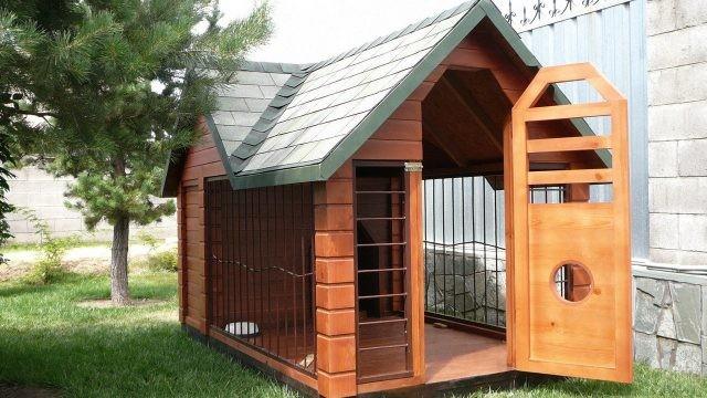 Комфортный домик для собак с открытой дверью