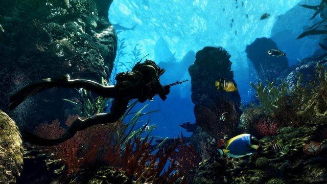 Аквалангист готовится к охоте под водой