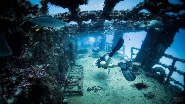 Дайвер в затонувшем корабле