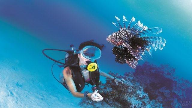 Девушка в акваланге с экзотической рыбой