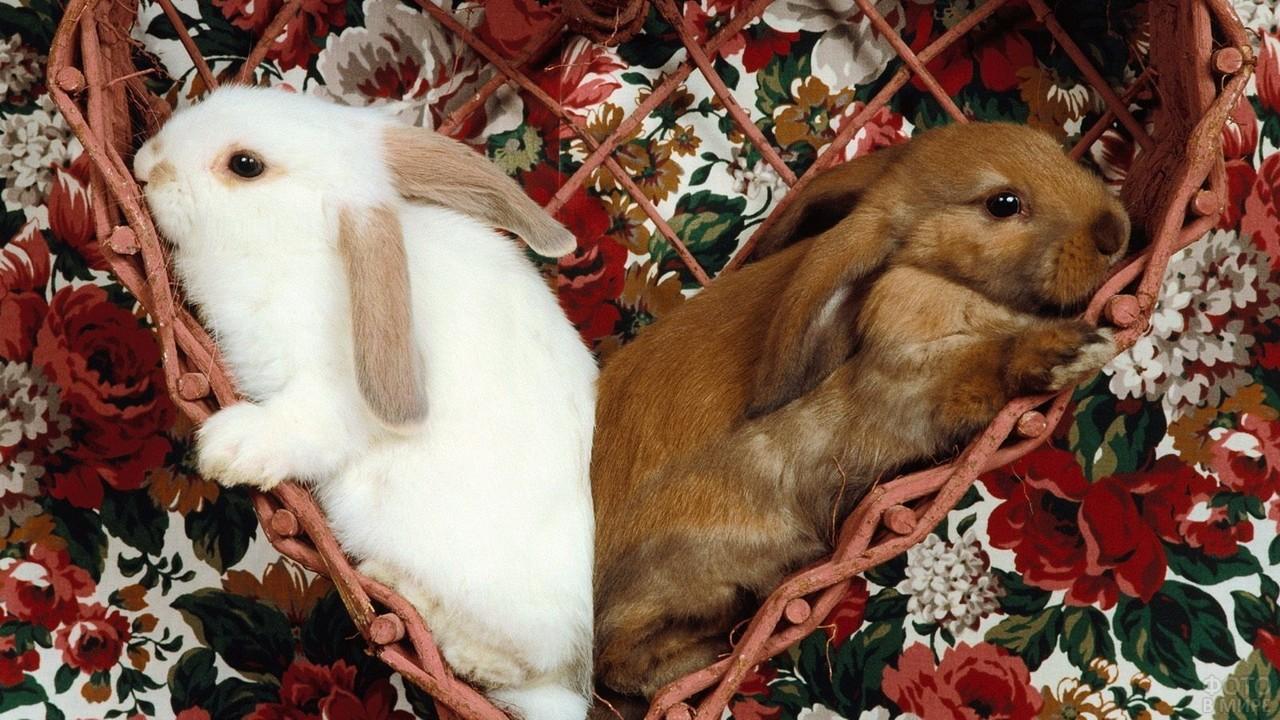 Два кролика сидят в плетёном сердечке