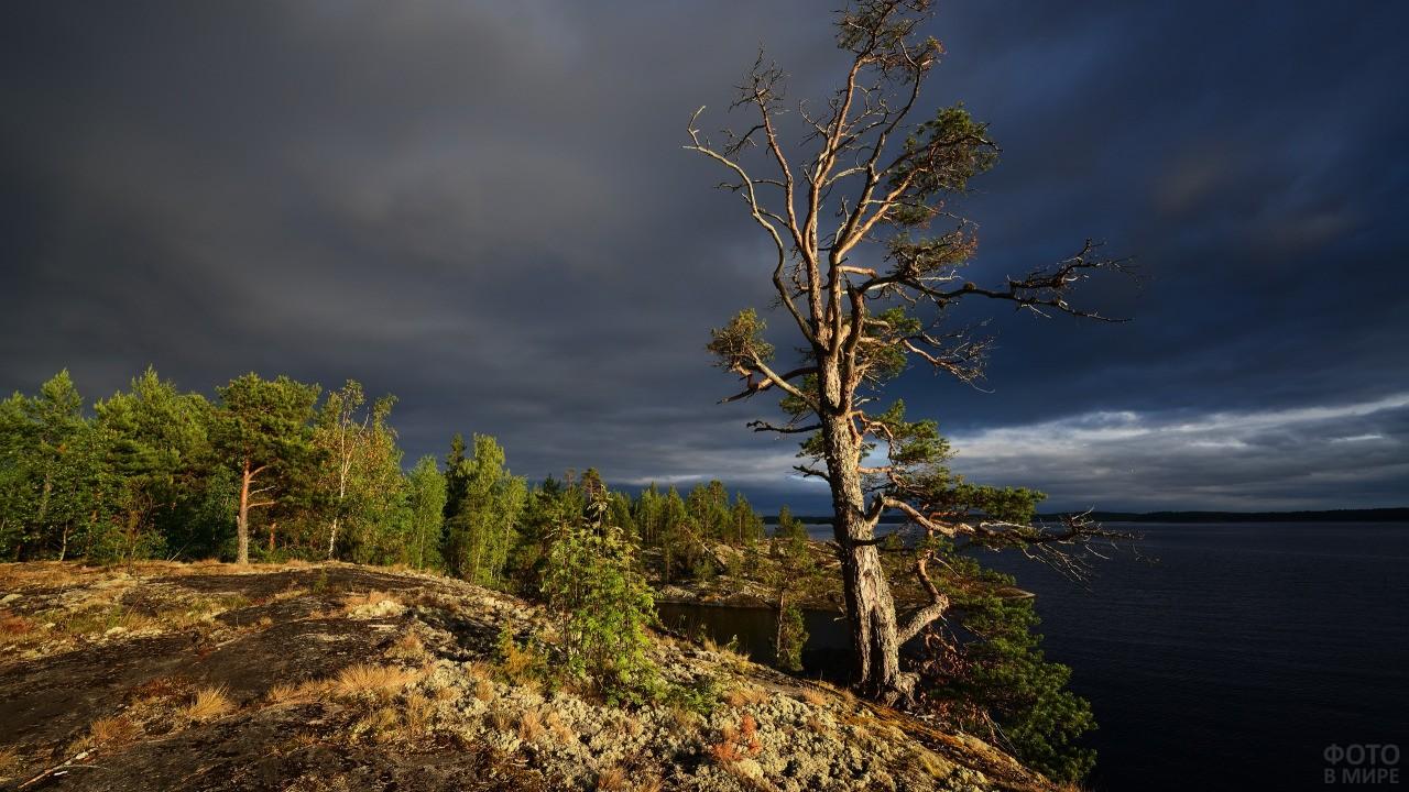Грозовые тучи над лесом и озером