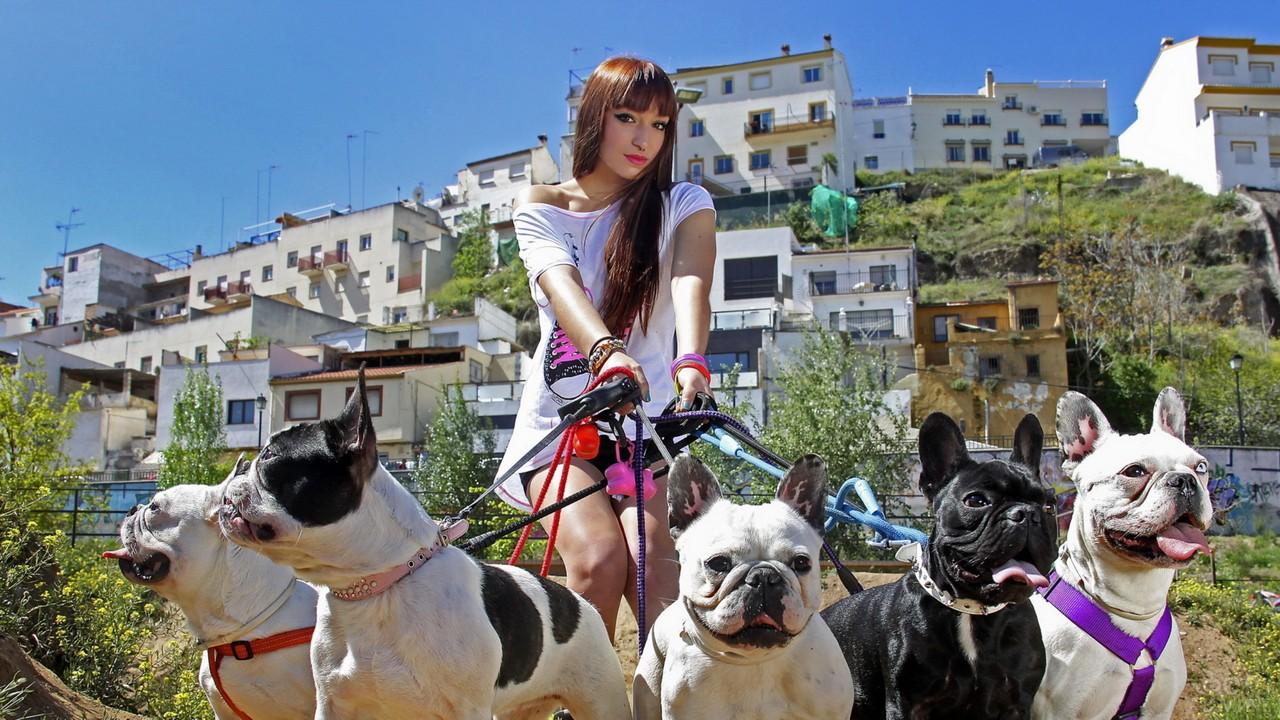 Девушка выгуливает собак