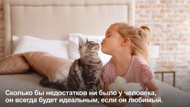 Человек идеальный - девочка и кот