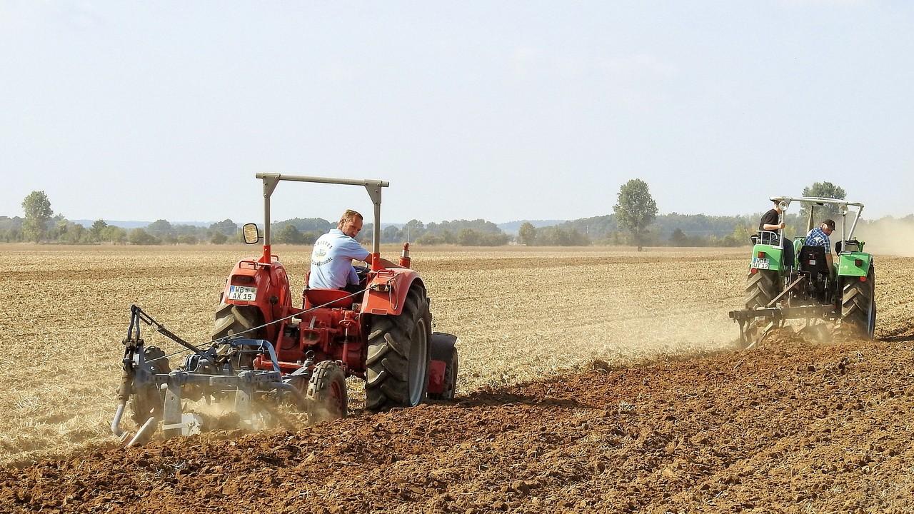 Сельскохозяйственные работы в поле