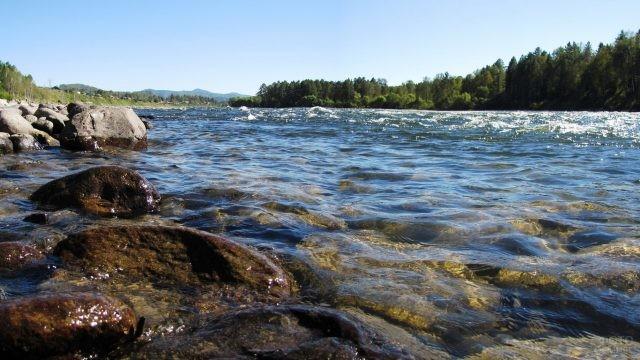 Каменистый берег реки Бии
