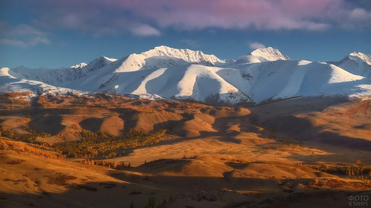 Курайский хребет Алтайского заповедника