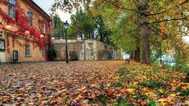 Осенний парк на острове Кампа