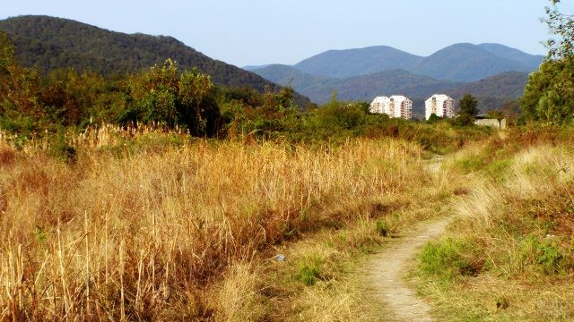 Сельская дорога через поле среди холмов