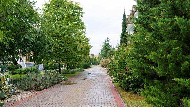 Сентябрьский парк базы отдыха Агой