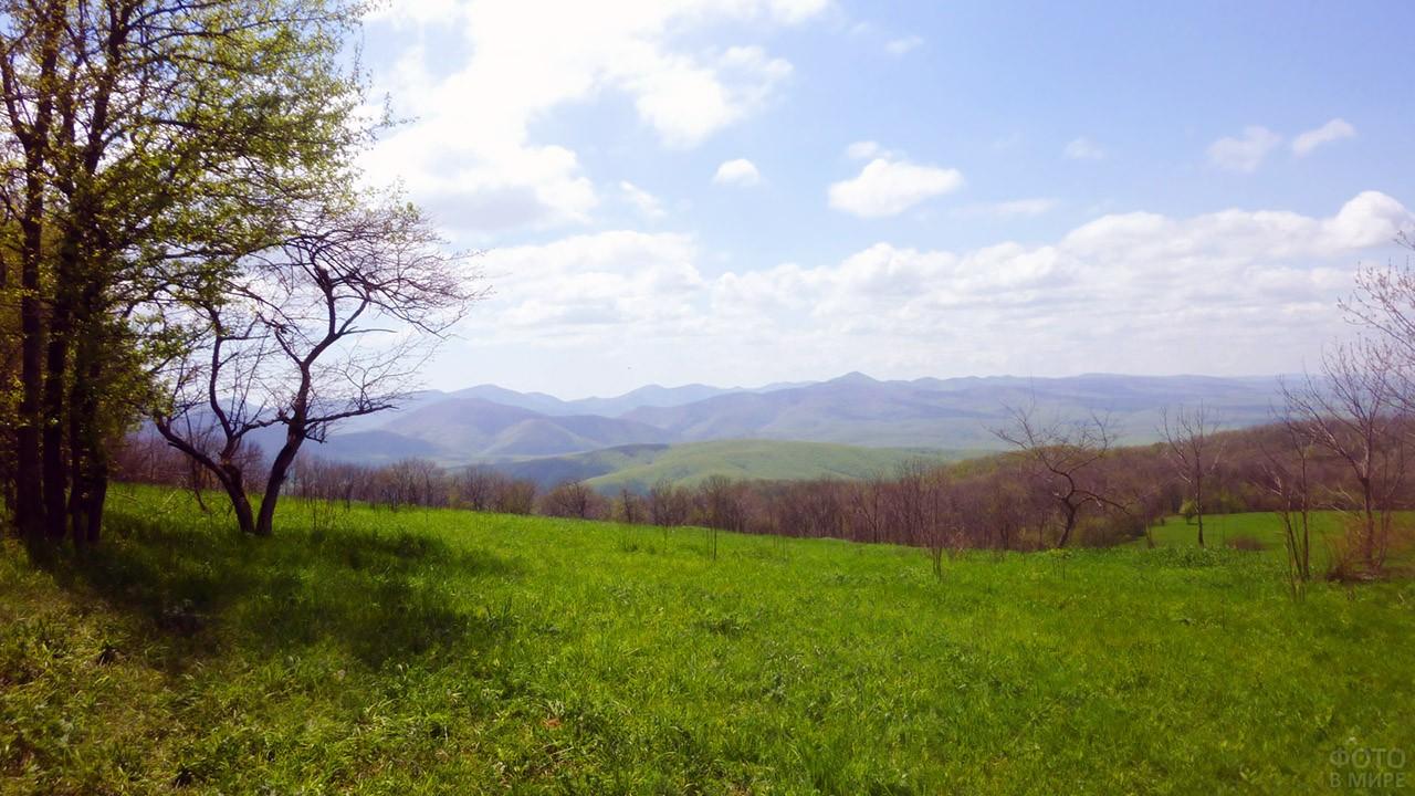 Весенняя долина с горы Шапсуга