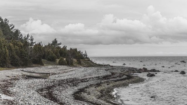 Каменистый берег острова Сааремаа