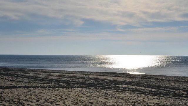 Песчаный пляж Пионерска Калининградской области