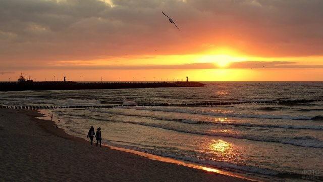 Польское побережье Балтийского моря