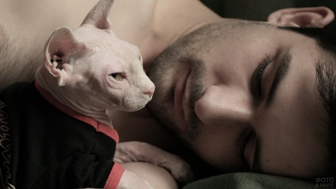 Мужчина и одетый кот на кровати