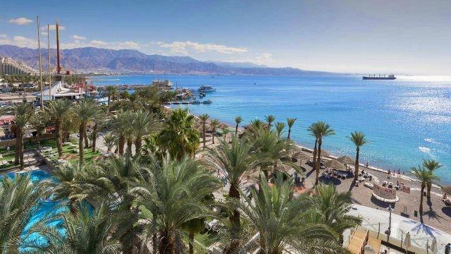 Пальмы на берегу Средиземного моря