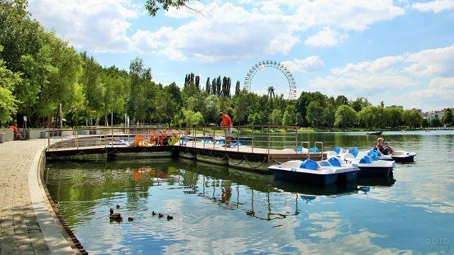 Прокат катамаранов на Голицынских прудах