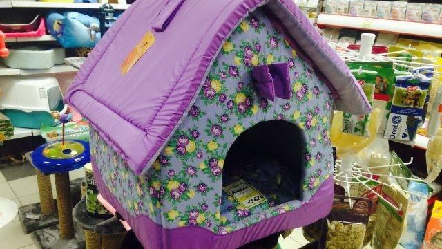 Яркое жилище для кошки в магазине