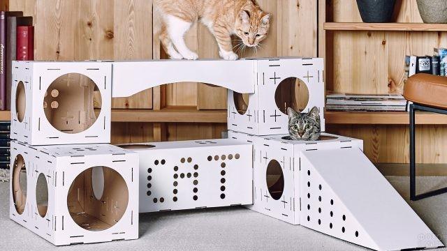Лабиринт с играющими кошками