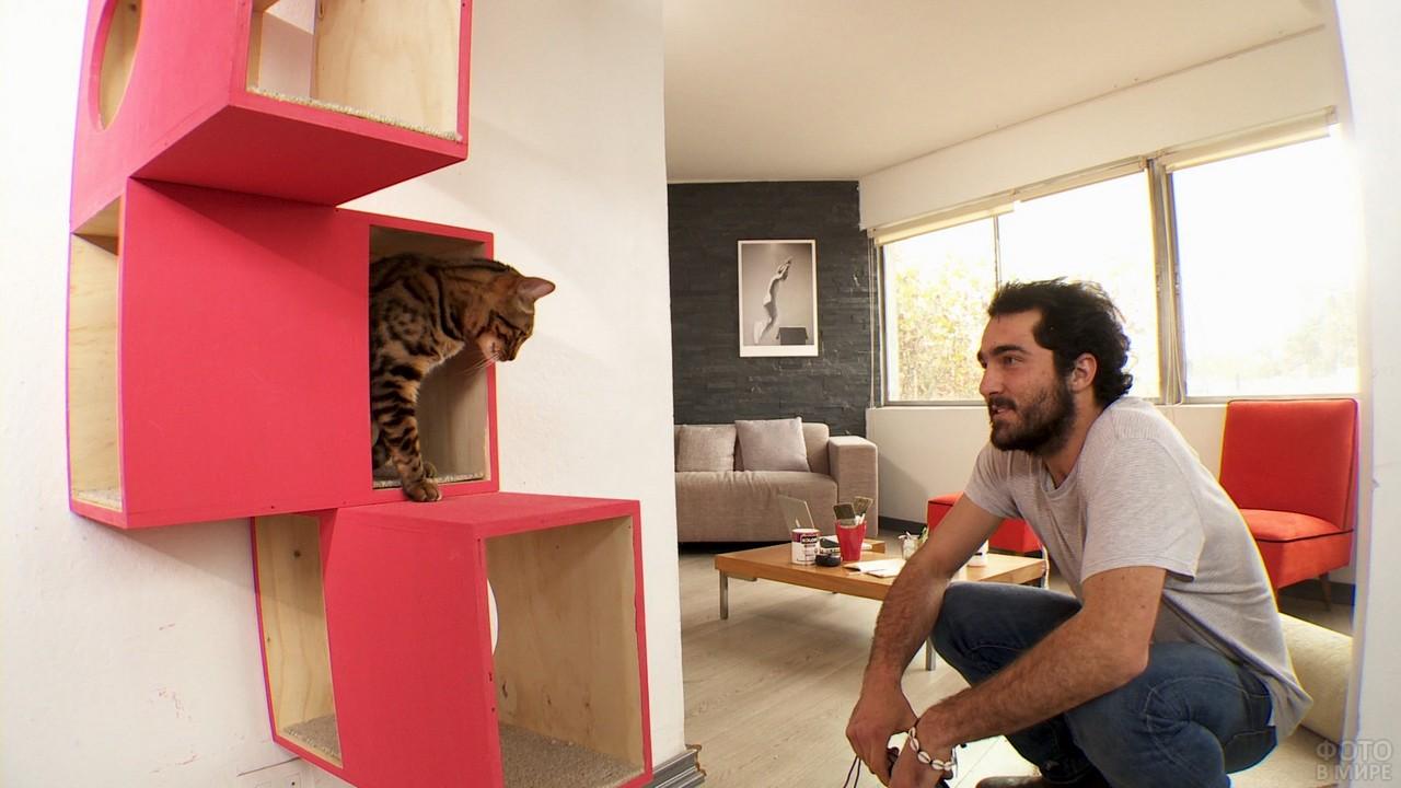 Мужчина смотрит на кошку в домике