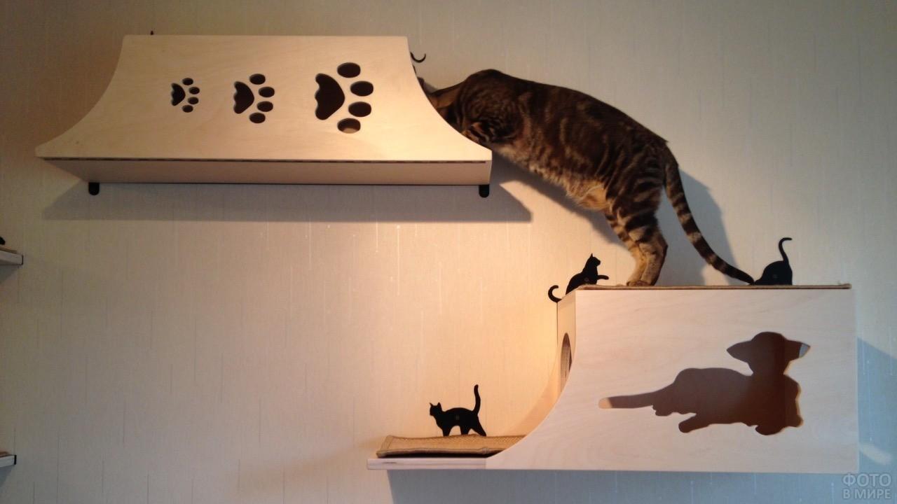 Настенный городок для кошки