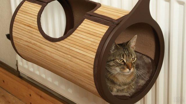 Навесной гамак с кошкой на батарее
